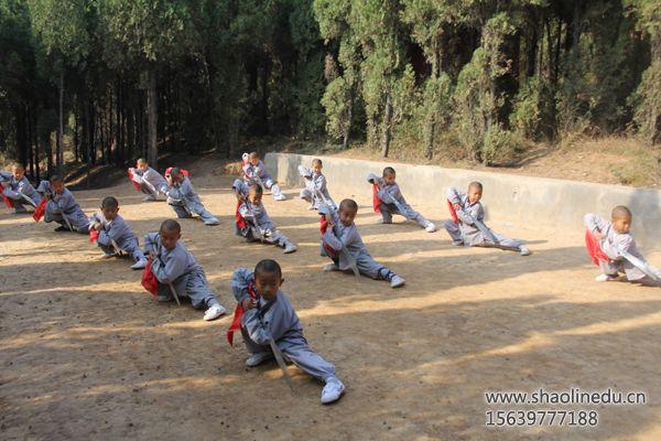 少林寺武术学院学生兵器练习