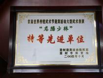 嵩山少林寺武术学院办学荣誉以及学院弟子奖牌