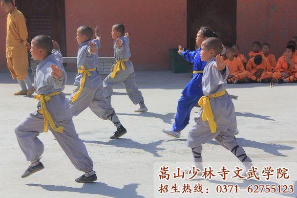 少林寺公办武术学校