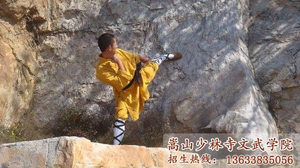 嵩山少林武术学校的学员在训练武术