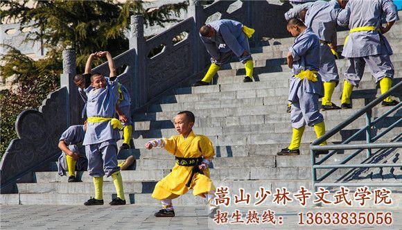 少林寺武术学校的小学员在认真的训练武术