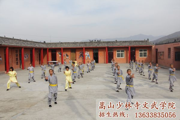 嵩山少林武术学校的学员在习武