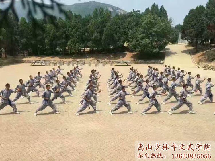 少林寺文武学校的学员在后山训练