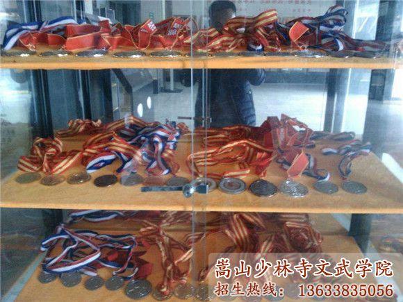 少林寺文武学院获得的荣誉
