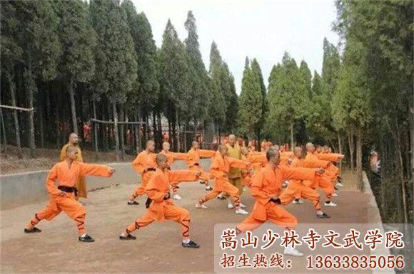 少林寺武校的学员在后山训练