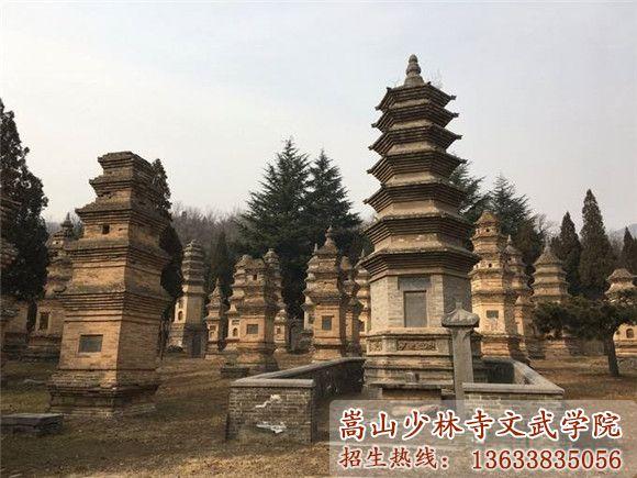 少林寺武校的塔