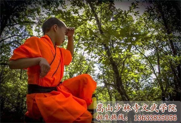 少林寺武术学校的学生在练习猴拳